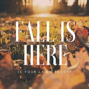 rsz_fall_instagram